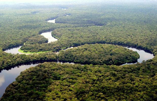 Une rivière dans le parc national de la Salonga, forêt équatoriale.