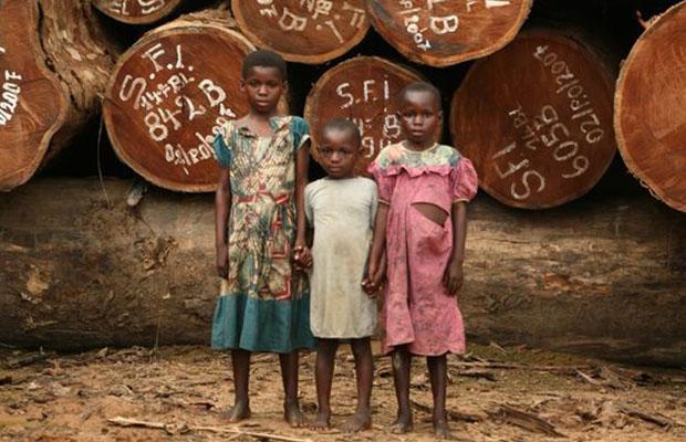 Le Bas-Congo présente un décor écologique et environnemental bien triste. (DR)