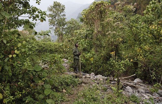 L'ICCN veut convaincre les habitants de cette réserve pour la réussite de ce projet. (Photo Radio Okapi)