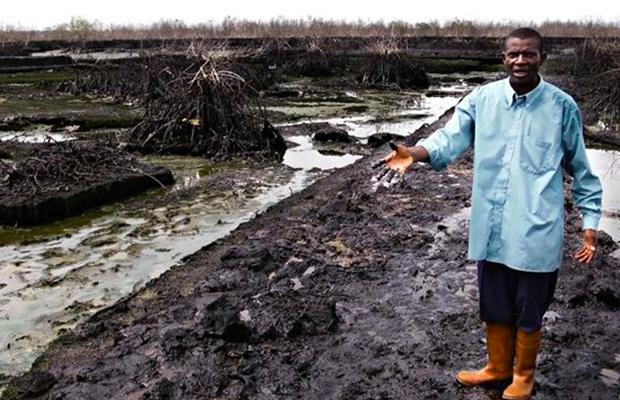 Un fermier nigerian montrant l'étendue des dégâts causés par Shell à Bodo.