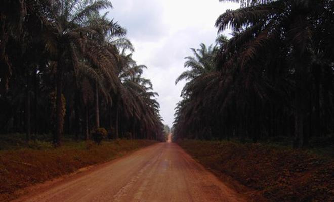 Une route réhabilitée dans la province Orientale.