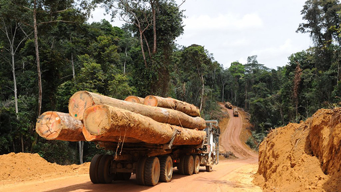 Infrastructures de transport et développement économique
